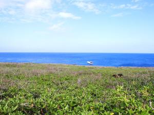 カナン崎ドームに停泊するダイビングボート「あかじん2」