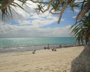 伊江島ダイビングサービス前のビーチ