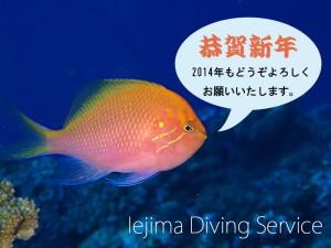 2014年伊江島ダイビングサービスの年賀