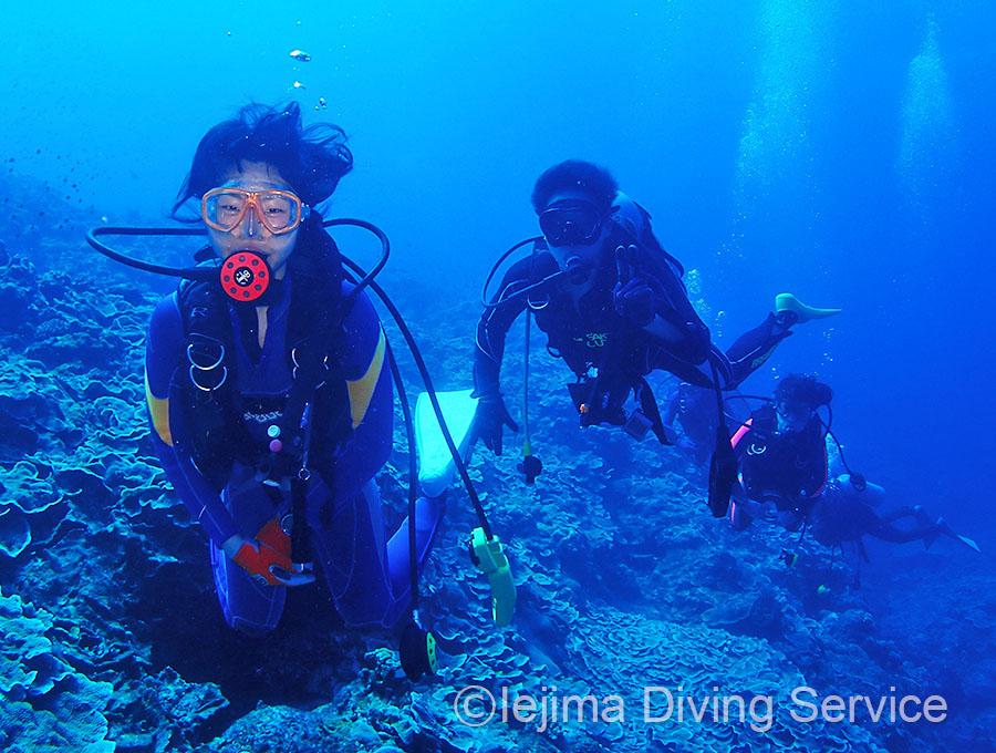 伊江島のドロップオフをダイビング