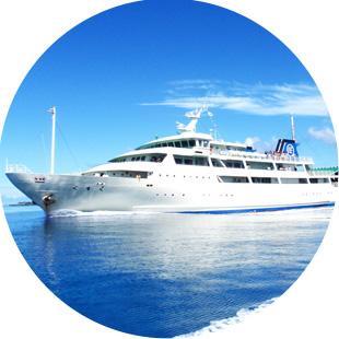 沖縄本島からの日帰りダイビングもOKのイメージ